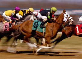 racehorses-jpg.20600